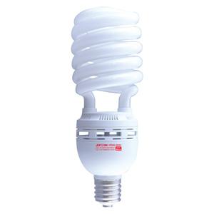電球型蛍光ランプ(スパイラル型)