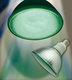 ビーム蛍光ランプ